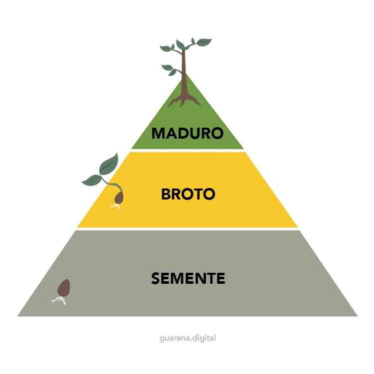 Pirâmide de vendas do marketing digital
